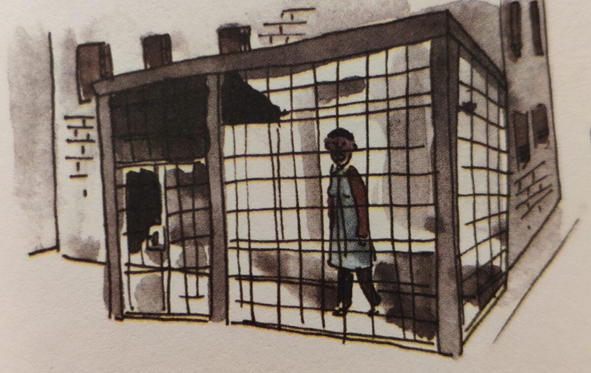 Mio caro fumetto... - In isolamento l'aria è nel cortile del carcere ma in una gabbia